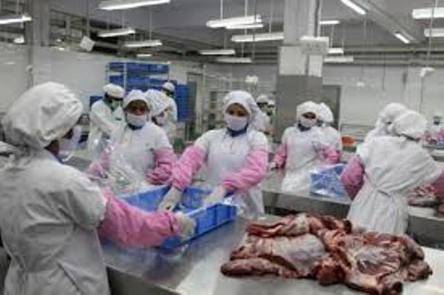 Out of six largest meat suppliers in India four are Hindus