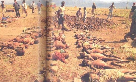 Image result for nellie massacre